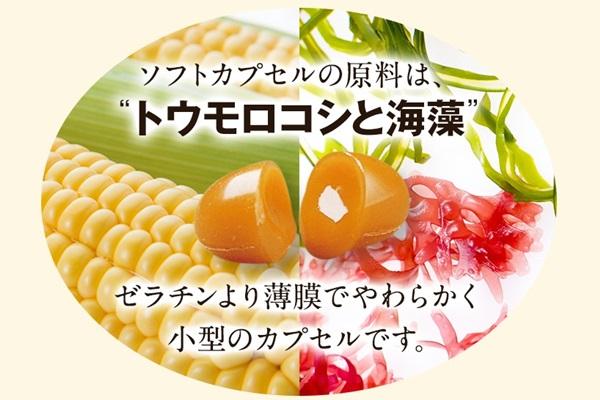 伝統にんにく卵黄+アマニの植物性カプセル