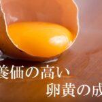 卵黄の主な成分 | 栄養価や効果、コレステロールなどについて解説
